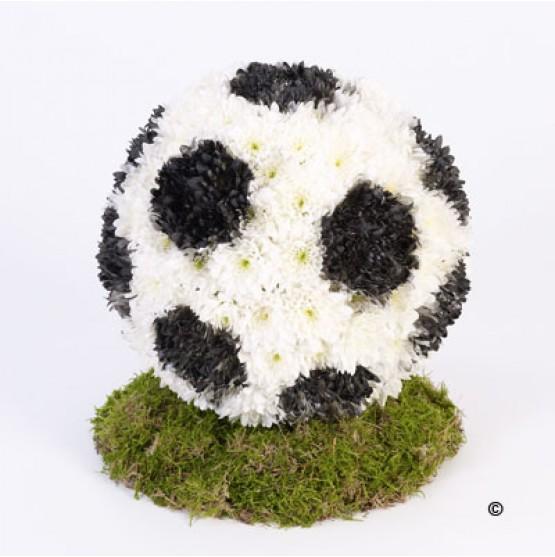 Football Tribute