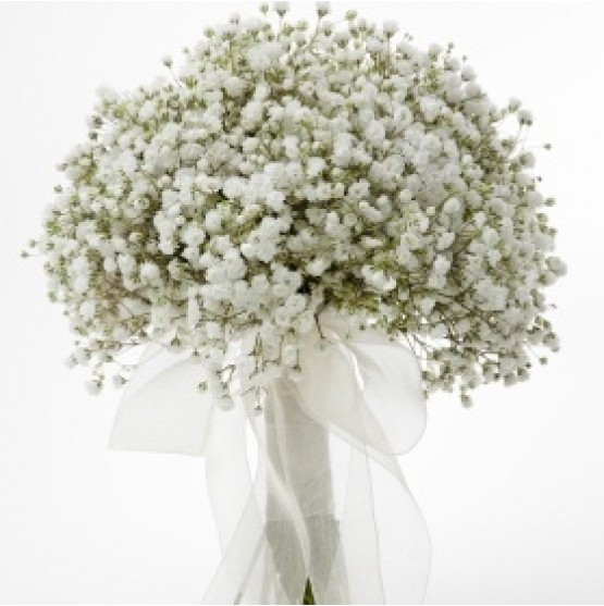 Simple Wedding Bouquet Of Flowers: Simple Gypsophlia Bridal Bouquet