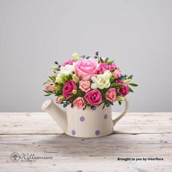 Pink Flourish