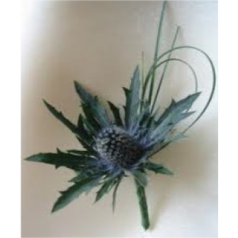 Gents Simple Eringium Thistle Buttonhole