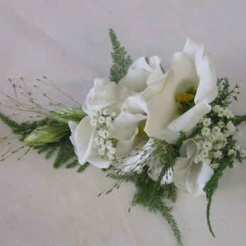 Ladies Eustoma Fern and Gyp Corsage