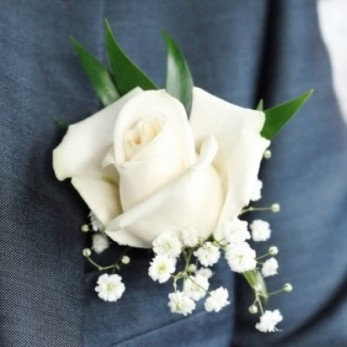Gents Single Rose with Gyp buttonhole