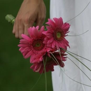 Simple Germini Bridal Bouquet