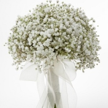 Simple Gypsophlia Bridal Bouquet