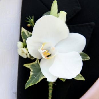 Gents Phalanopsis Orchid buttonhole