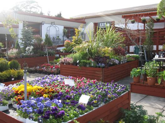 Williamson's Garden Centre